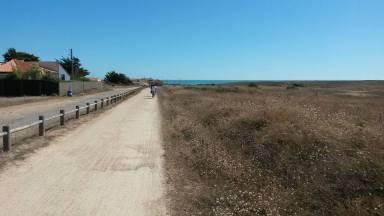 54-sandy-roads